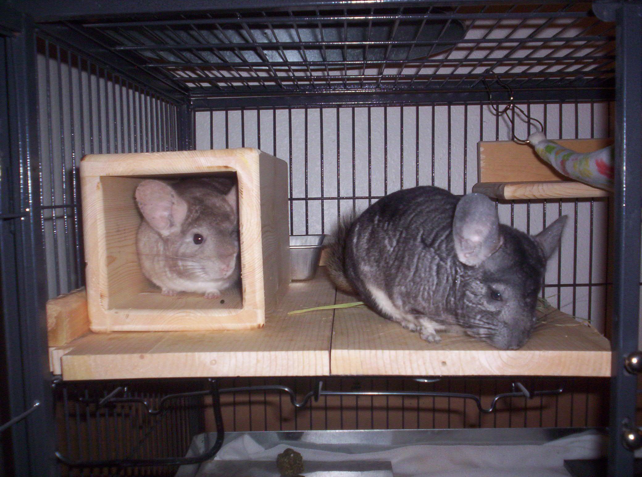 Photo of Jake & Sandy