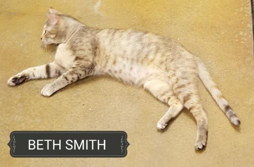Beth Smith 170988