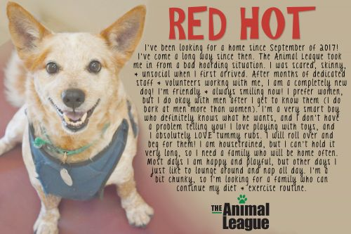 Photo of Red Hot