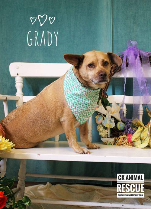 Photo of Grady