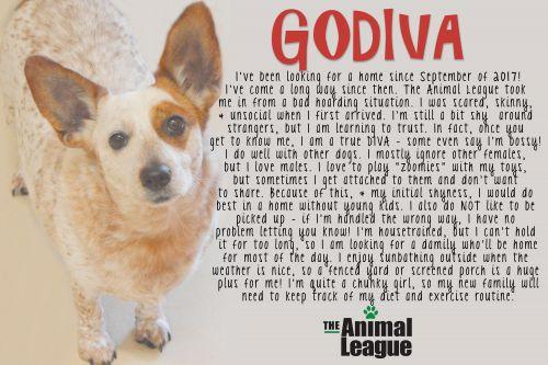 Photo of Godiva