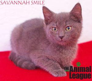 Photo of Savannah Smile