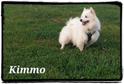 Photo of Kimo
